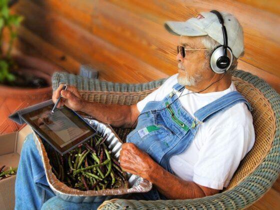 Nowoczesny rolnik w sieci